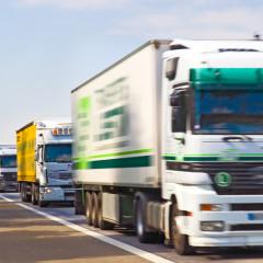 transport/logistics services